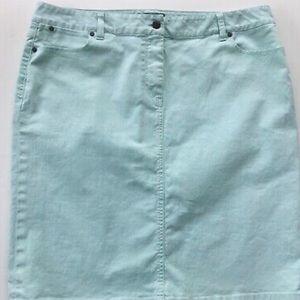 Mint Denim Skirt
